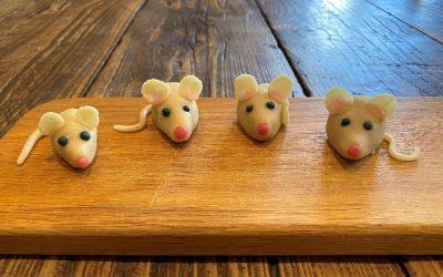 Tudor mice