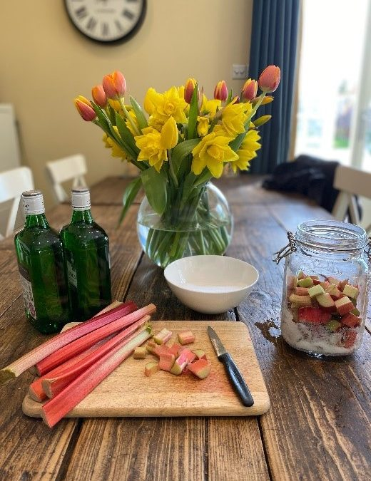 The glory of Spring and rhubarb gin